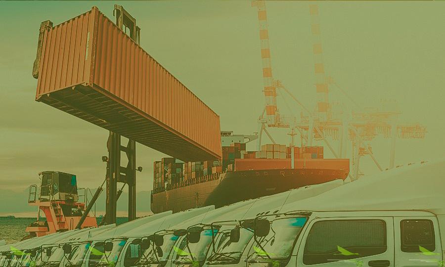 Растаможка Турции в порту
