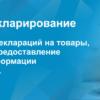 Россия переходит на электронную таможню