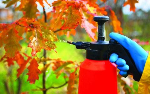 нулевая ставка таможенной пошлины на ряд органических химических соединений, используемых в производстве химсредств защиты растений
